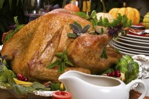 holiday-turkey